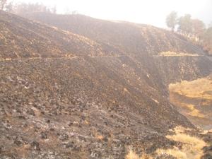 Oro-oro Ombo yang terbakar, pertengahan 2011